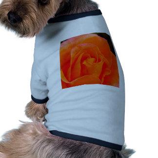 Orange Colored Rose Doggie T Shirt