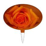 Orange colorized rose against orange background cake pick