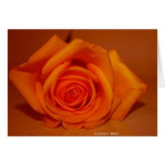 Orange colorized rose against orange background card