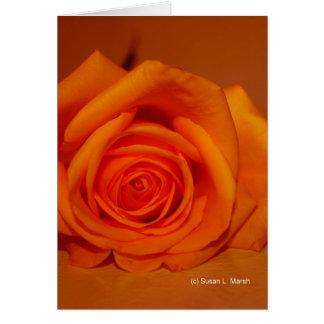 Orange colorized rose against orange background greeting card