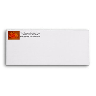 Orange colorized rose against orange background envelope
