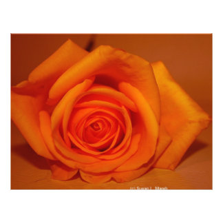 Orange colorized rose against orange background personalized flyer