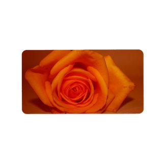 Orange colorized rose against orange background address label