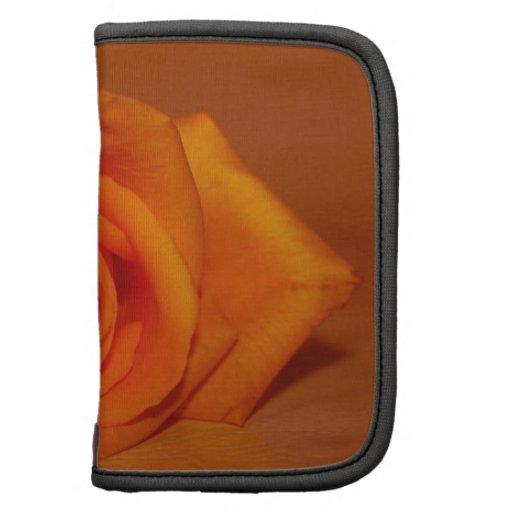 Orange colorized rose against orange background organizer