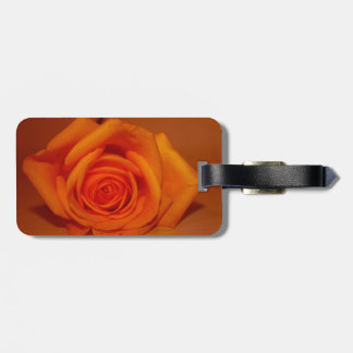 Orange colorized rose against orange background tags for bags