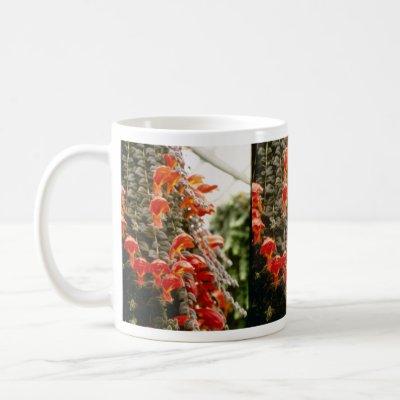 columnea goldfish plant. Gloriosa Goldfish Plant