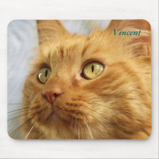 Orange Coon Cat Mousepad