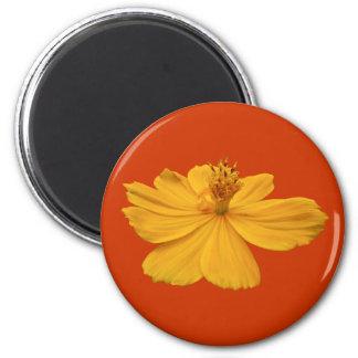 Orange Cosmos Coordinating Items Magnet