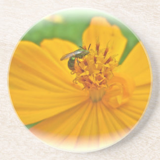 Orange Cosmos Flower and Sollitary Bee Drink Coaster