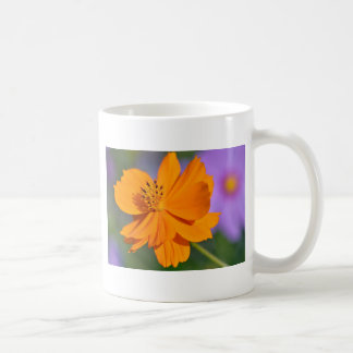 Orange cosmos flower coffee mug