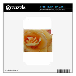 Orange Cream Rose Decals For iPod Touch 4G