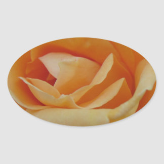 Orange Cream Rose Oval Sticker