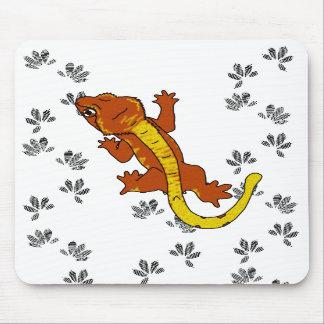 Orange Crestie Footprints mousepad