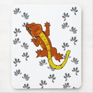 Orange Crestie Footprints (mousepad)