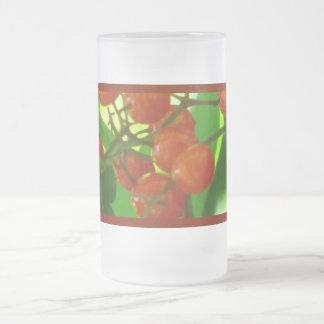 Orange Currant Berries 16 Oz Frosted Glass Beer Mug