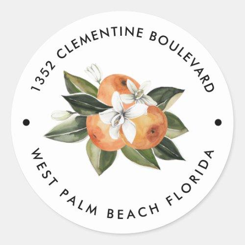 Orange Cutie Tangerine Return Address  Classic Round Sticker