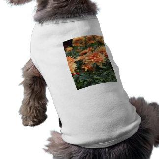 Orange Dahlia blossoms Pet Tee Shirt