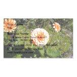 Orange Dahlia flower in garden Business Card Templates
