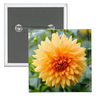 Orange dahlia flower pinback button