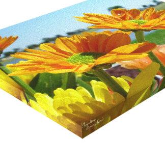Orange daisies Stretched Canvas Print