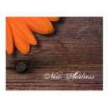 Orange Daisy and Barn Wood New Address Postcard