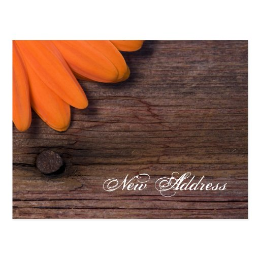 Orange Daisy and Barn Wood New Address Postcard