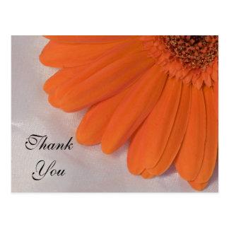 Orange Daisy and Satin Thank You Postcard