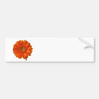 Orange Daisy Bumper Sticker