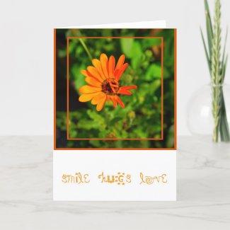 Orange Daisy-CARD card