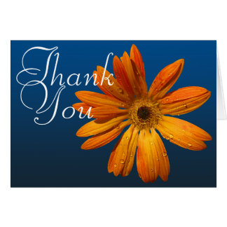 Orange Daisy Colorful Photo Chic Floral Thank You Card
