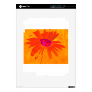 Orange Daisy Decal For The iPad 2
