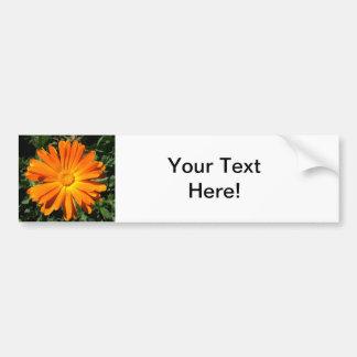 Orange Daisy design Customizable Car Bumper Sticker