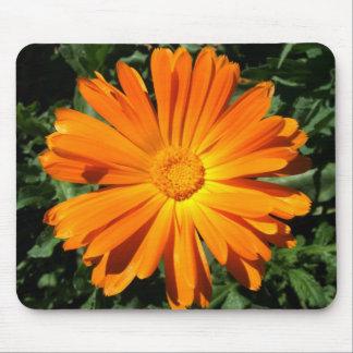 Orange Daisy design Customizable Mousepad