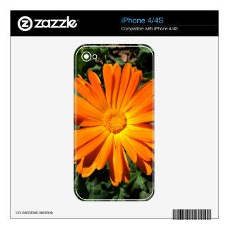Orange Daisy design Customizable Skin For iPhone 4