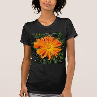 Orange Daisy design Customizable T-Shirt