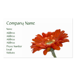 Orange Daisy Gerbera Flower Double-Sided Standard Business Cards (Pack Of 100)