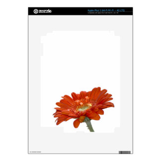 Orange Daisy Gerbera Flower Decal For iPad 3