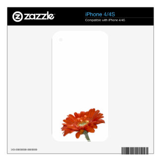 Orange Daisy Gerbera Flower Decals For iPhone 4S