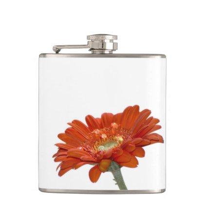 Orange Daisy Gerbera Flower Flask