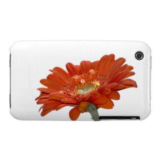 Orange Daisy Gerbera Flower iPhone 3 Case-Mate Case