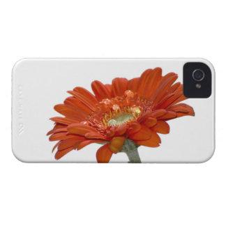Orange Daisy Gerbera Flower iPhone 4 Case