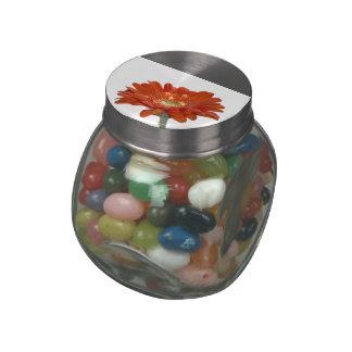 Orange Daisy Gerbera Flower Jelly Belly Candy Jars