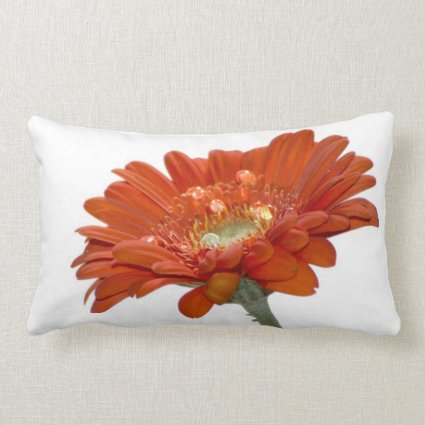 Orange Daisy Gerbera Flower Throw Pillow
