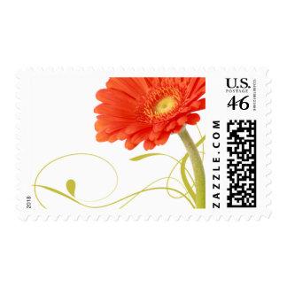 Orange Daisy Gerbera Wedding Stamps