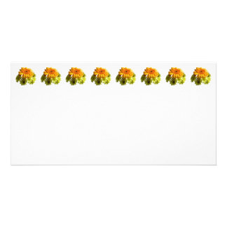Orange Daisy With Yellow Mums Photo Card Template