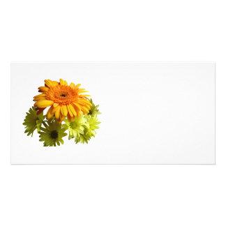Orange Daisy With Yellow Mums Custom Photo Card