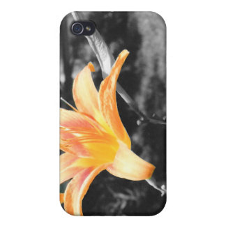 Orange Day Lily iPhone 4/4S Case