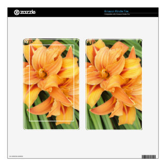 Orange Daylilies Decals For Kindle Fire