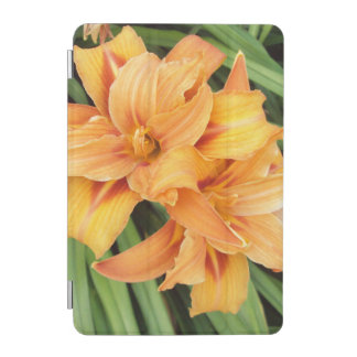 Orange Daylilies Floral iPad Mini Cover
