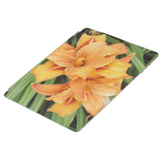 Orange Daylilies Floral iPad Smart Cover